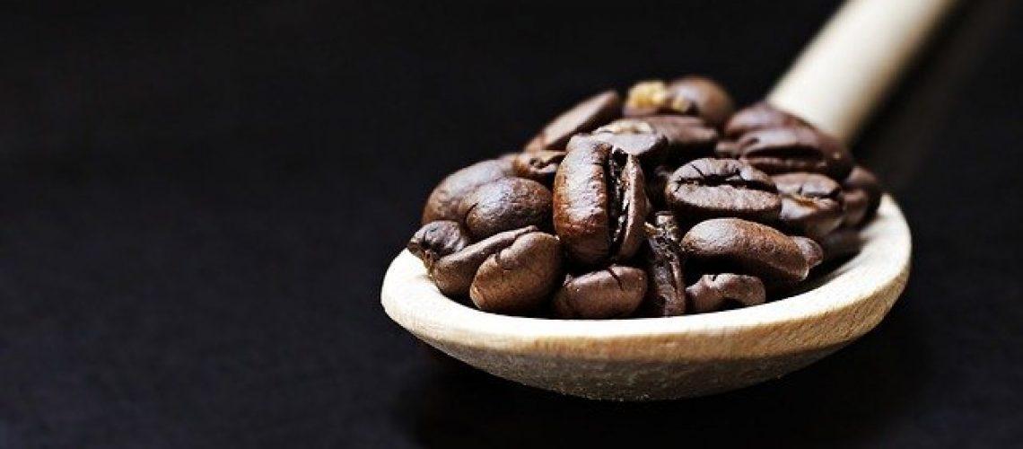 פולי קפה פרימיום