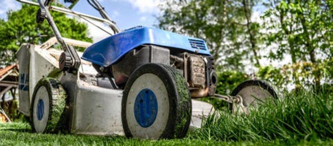 מכסחת דשא